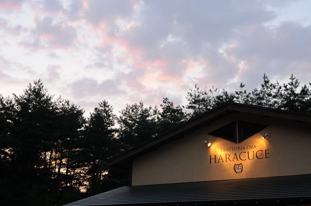 Haracuce (447)